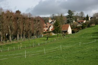saint-cyr-en-arthies-36